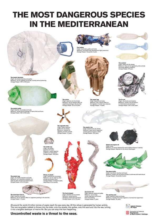 Trash as Fish Infographic