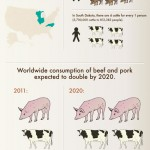 Eating-Insects-infographic
