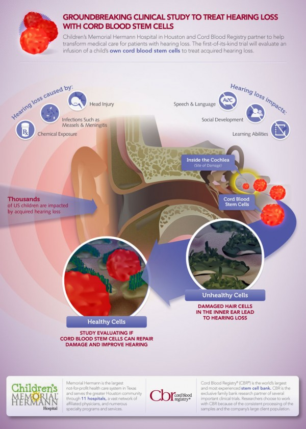 Stem Cell Hearing Loss