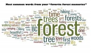 forest word cloud