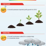 2012-edna-small-business-survey-infographic