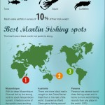 big-game-fishing-infographic