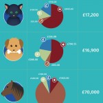 The True Costs of Pets
