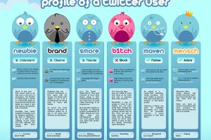 Twitter Users Profile Infographic