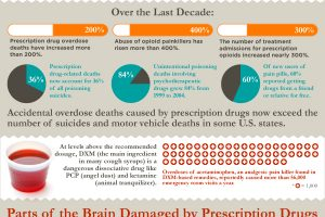 This is Your Brain on Prescription Drugs Infographic