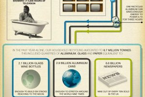 How Much Do We Really Recycle: Infographic