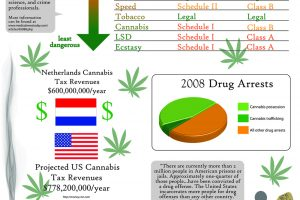 Is Cannabis Treated Unfairly Infographic