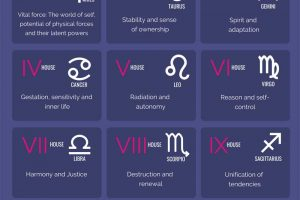 Astrology Explained in 5 Easy Steps Infographic
